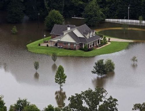Water and Flood Damage Remediation
