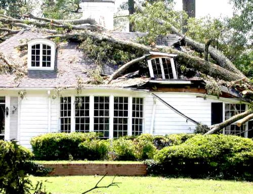 How to Keep Your Property Safe After a Disaster